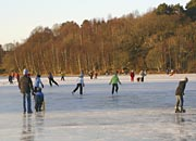 lots of people having fun on the ice